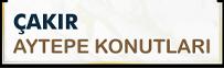 2-project-logo