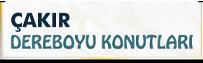 4-project-logo