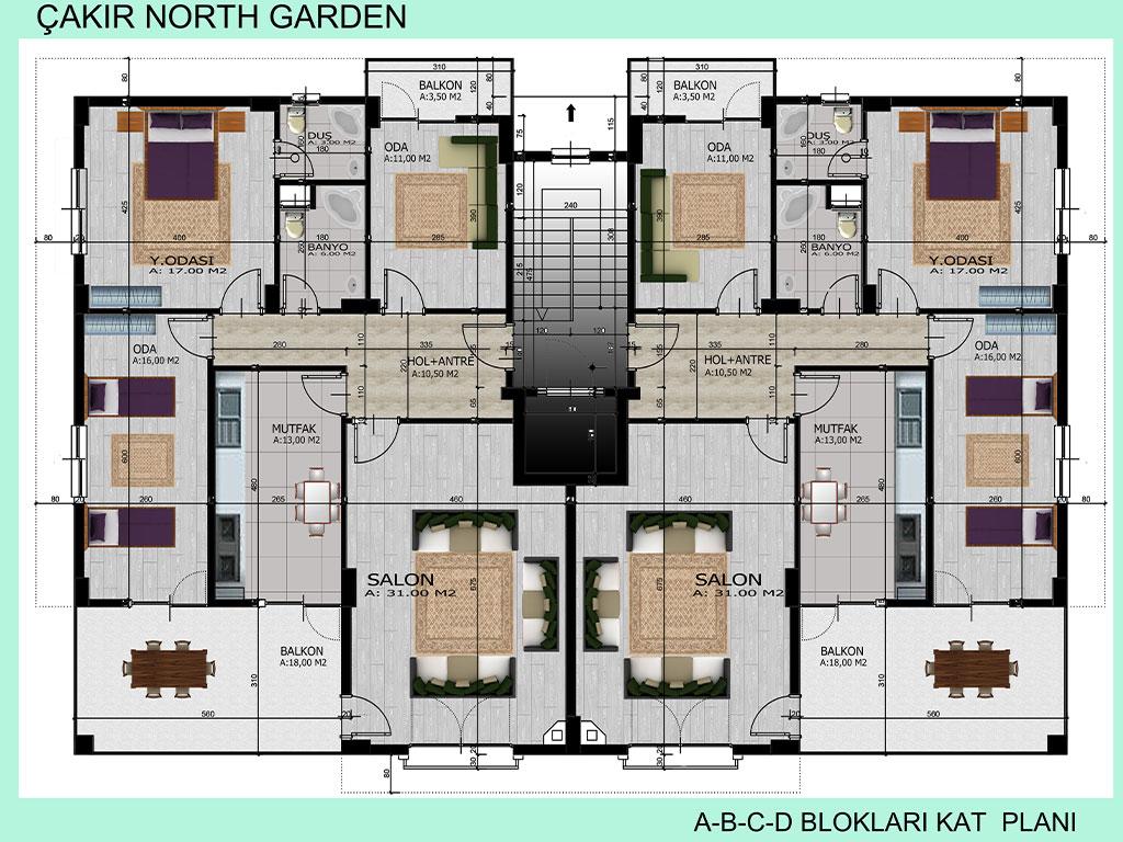 project_details_NG8